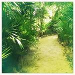 Wege zu den Cabanas