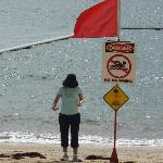 beach closed for a few days