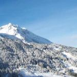 unser Skigebiet am Hang gegenüber