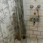 Shower curtain and the shower taps...Oh, why can't they spend 200/- and replace the shower curta