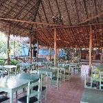 Foto de Hotel Selva Verde