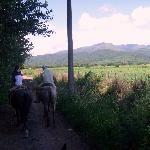 Por los caminos de Chicoana