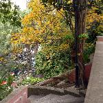 Jardim San Francisco (3)