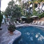 Second pool, with garden