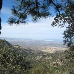 View from Old Baldy Trail