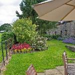 Patio area and gardens