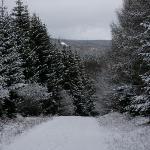 Winterwanderweg um Friedrichsbrunn