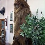 International Cryptozoology Museum Photo