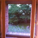 Lavendar - out of bathroom window!