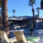 Morning at the Lido Palms, Desert Hot Springs, CA.