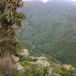 Surrounding area view of Blyderivier's Canyon