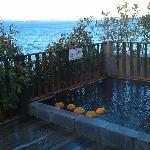 Foto de Hotel Umine