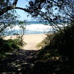 Pathway onto beach