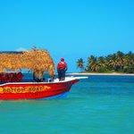 Pelicano Water Sports Foto