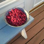 home-grown raspberries for our guests