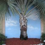 REAL PALM TREE IN FRONT OF PAINTING