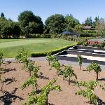 Grounds include bocce, tennis, putting & more!