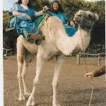 Myself on the camel
