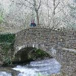Crossing Sherrycombe