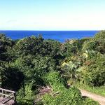 A view from the villa, Lucienda.