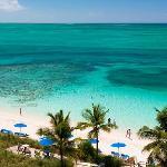 Beach & Reef
