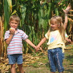 Enjoy our Corn Maze on Fall Weekends