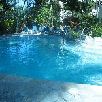 Albatros' pool