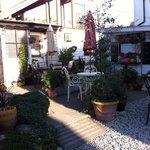 Sara's Tea Garden