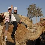 Shalom Israel Camel Rides!