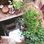 le bassin de la fontaine et ses poissons