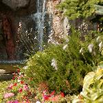 Outdoor Waterfalls in the landscaped Courtyards