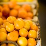Fresh, organic citrus - clementines, kumquats, blood oranges, tangelos & more!