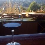 From inside tasting room, gorgeous view of Russian River Valley