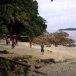 beach volleyball + flying fox