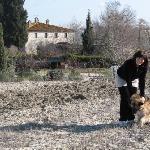 Agriturismo la canonica san giovanni d'asso foto del 31 gennaio 2012