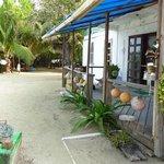 PAW Animal Sanctuary