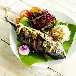 Gourmet, fresh & healthy meal choices