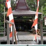 Rimba Eco Lodge