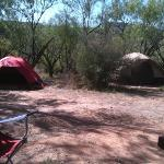 campsite in mesquite campground