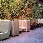 estre hojas lounge