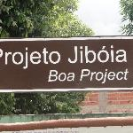 Projeto Jiboia - Programa educativo, divertido e em horário conveniente.