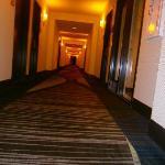 such a cool hallway (7th floor)