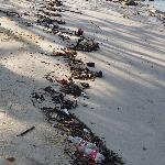 détritus sur plage artificielle