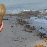 ampoule trouvée sur plage de l'hôtel