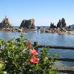 橋杭岩とハイビスカス