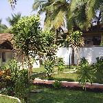 Gardens in front of Rooms 147-150 CSM