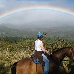 Stunning Scenery Horse Trek Monteverde