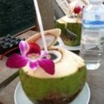 Young Coconut drink poolside