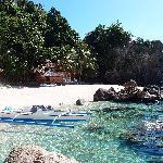 Apo Island - a paradise !