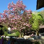 Photo of Grotto Flora B&B